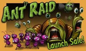 ant_raid1.jpg