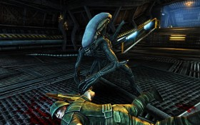 avp_evolution1.jpg