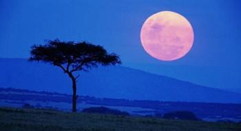 Туры в Кисуму, Кения